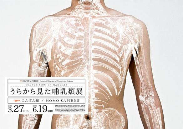 wpid-wataru-yoshida-2011-04-4-01-33.jpg